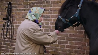 """Candid footage shows the Queen joking and feeding her horses 🐴🐴🐴 ... #royalFamily #windsor #royalstyle #royal"