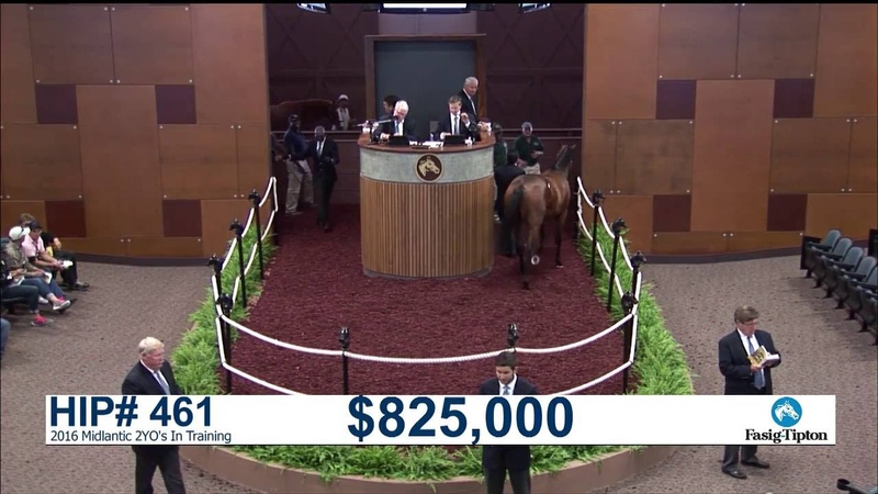 Before They Were Stars: G1-Carter H. winner ARMY MULE at the 2016 Midlantic 2YO's in Training Sale
