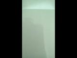 Паук в моей ванной