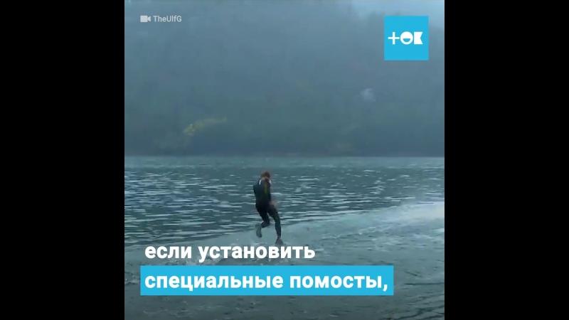Новый вид спорта кто дальше пробежит по поверхности воды здесь можно понять методику бега по воде