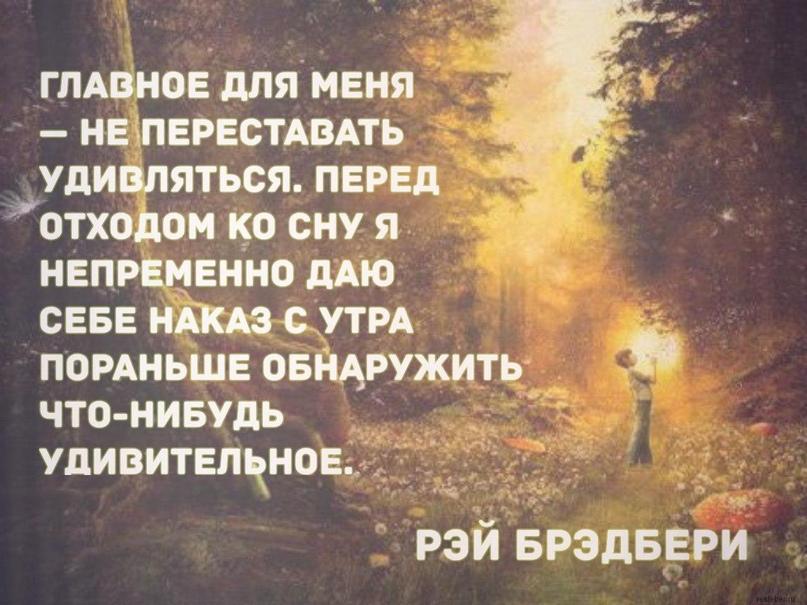 https://pp.userapi.com/c850432/v850432069/595c/NH-MmW9dt6I.jpg