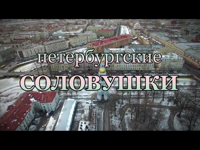 Петербургские соловушки Анастасии Дьяковой