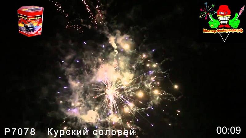 Салют Курский соловей 19х1 25