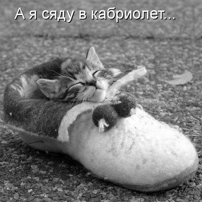 Наташа Тимошина, 13 ноября 1984, Москва, id144929734