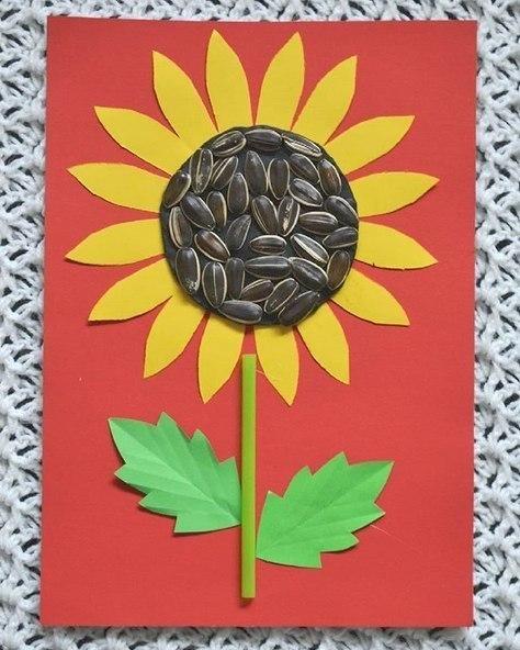 Подсолнух . Сделали основу-цветок, на картонный круг-серединку намазали чёрный пластилин и вдавили крупные семечки. Эту серединку делали отдельно, после просто приклеили её к