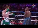 Флойд Мейвезер vs Сауль Альварес |  школа-бокса.com