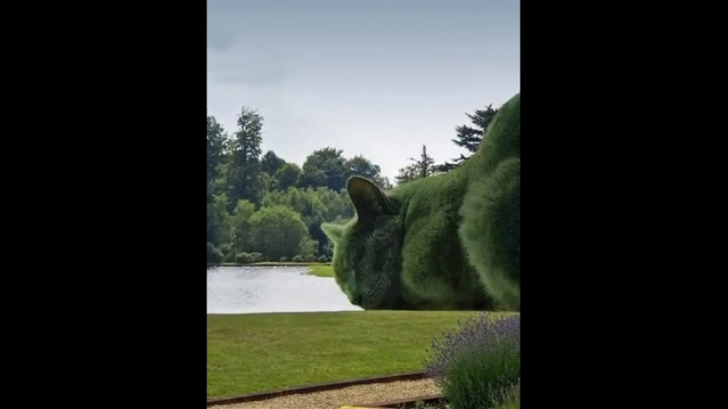 The Real Topiary Cat 3