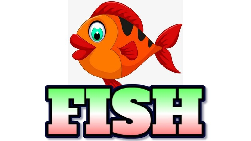 [Animal 28] Watch about LIFECYCLE OF A FISH fact, you will be suprised