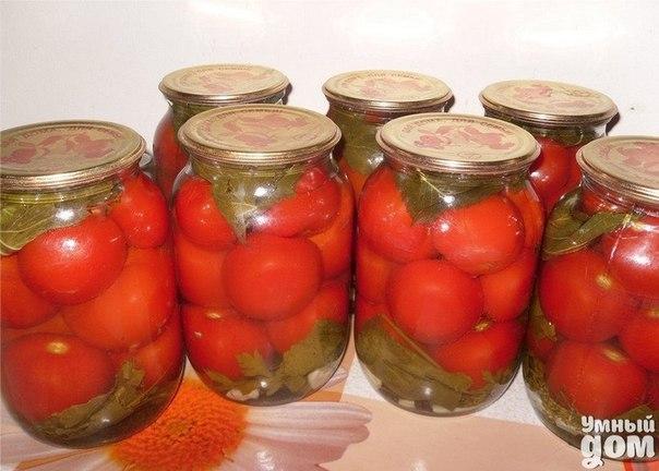Помидоры в желе - Зима будет вкусной!!! Что нужно: черный перец – 3 горошины помидоры маленькие – 2 кг душистый перец – 3 горошины укроп (соцветия) или петрушка (веточки) лист лавровый – 1-2 шт. лук репчатый – 0,5 кг чеснок – по желанию для заливки на 1,5 л воды: соль – 2 ст. л. сахар – 1/2 стакана желатин в гранулах – 2 ст. л. (25 г) Что делать: Лук почистить и нарезать кольцами. Помидоры наколоть со всех сторон зубочисткой. На дно стерилизованных банок положить душистый перец, черный перец и…