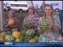 Выставки, мастер-классы и гала-концерт на Дону проведут фестиваль Калининское лето