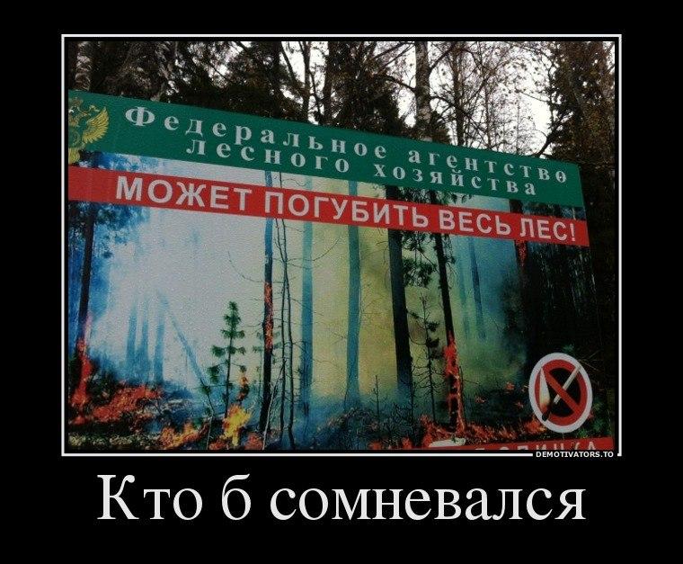 Более уязвимы, эро фото девушки сальск ростовская область случай послужил