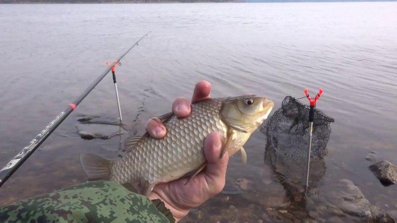 просто с удочкой на водоем выпуск №51-05.04.2018 десногорское водохранилище рыбалка- набережная