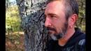 Крымский лес Прогулка в Золоиую осень