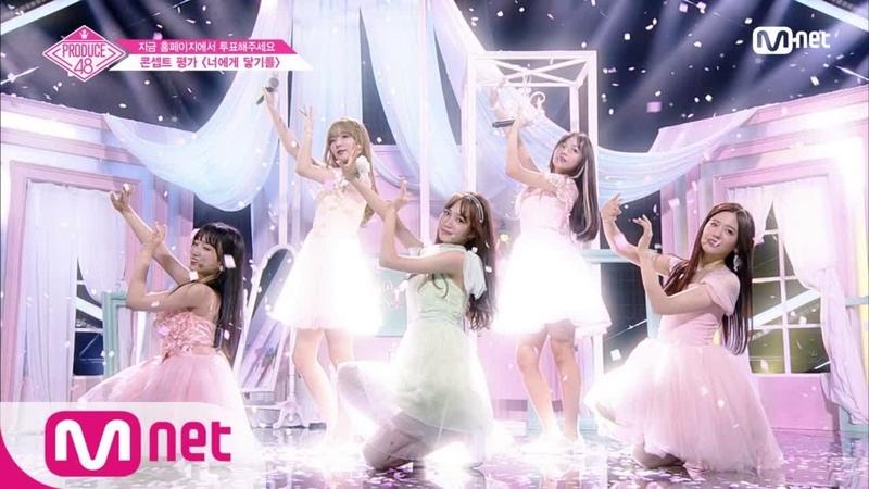 PRODUCE48 [10회] ♬너에게 닿기를ㅣ′국.프님의 첫사랑이 되고파′ 기억 조작단 @콘셉5