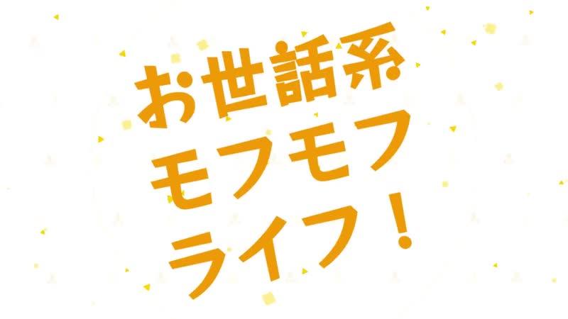 アニメ PV - 『Sewayaki Kitsune no Senko-san』 Teaser trailer