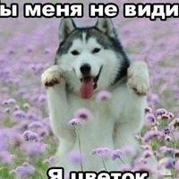 Михаил Скрипин, 2 апреля 1986, Невьянск, id99354597