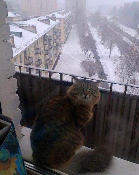 Хабаровск сегодня