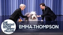Emma Thompson and Jimmy Wash a Sheepdog and It's F-ing Glorious