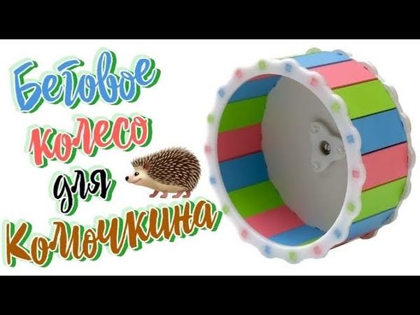 Разноцветное беговое колесо для нашего ёжика Колючкина