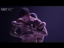 Thin Skin - Marco Goecke (NDT 1 _ Strike Root)