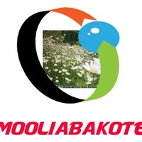 Moolia Bakote, 19 марта 1994, Брянск, id198296737