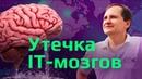 Утечка мозгов из России: 3 МЛН за 3 ГОДА | Информационная безопасность и программирование || ProgBlog TV
