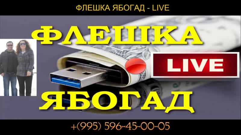 ФЛЕШКА ЯБОГАД - LIVE новый курс Александра Абесламидзе Ваша ссылка : clck.ru/EjGSF