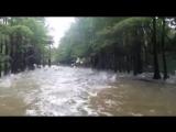 Псля зливи у Стрийському парку ))