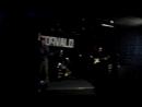 Торвальд 2