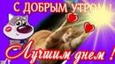 Добрым утром ! Пожелание в доброе утро ! Давай просыпайся хороший и добрый день на дворе !