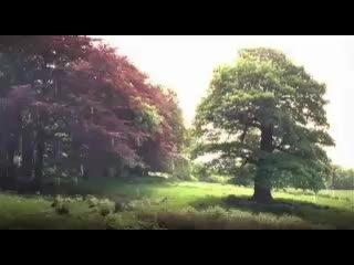 «Джейн Эйр» (2006): Трейлер / Официальная страница vk.com/kinopoisk