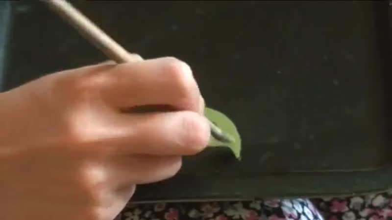 Жостовская роспись рисуем Веточку листьев в замалевке