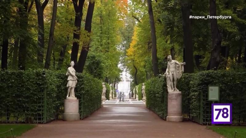 Петербурговедение Летний сад
