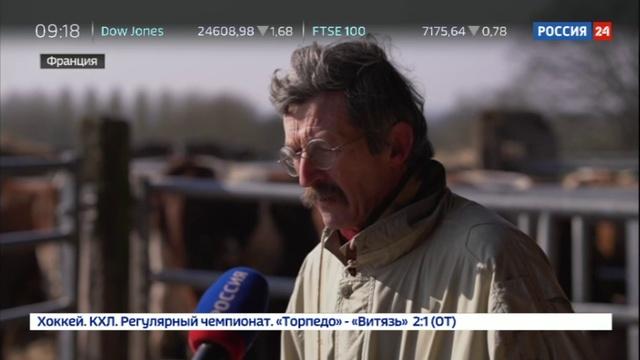 Новости на Россия 24 • Французский фермер собирается переехать в Россию