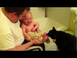 Kitten Licking Babys Feet - So Cute and Funny Video