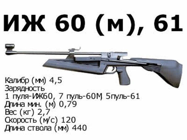 Все о винтовке ИЖ-60(61)