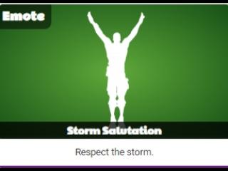 Storm Salutation (Приветствие бури) | Слив танца Fortnite | vk.com/zhenekyt