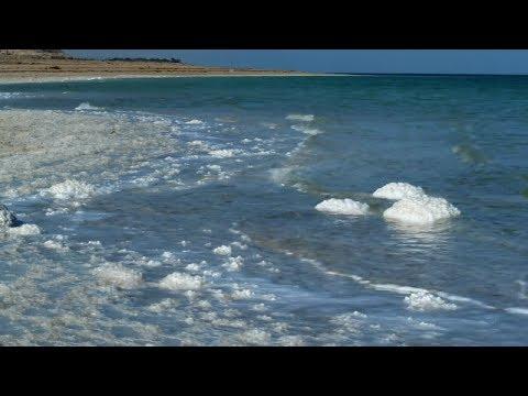 МОРЕ,ЧАЙКИ,Sea gulls,музыка,морская природа.