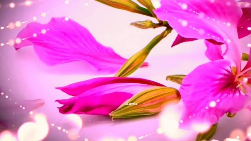 A Fleur de Coeur