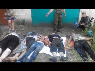 18 2014-08-05 Первомайск. От попадания мины карателей погибла вся семья