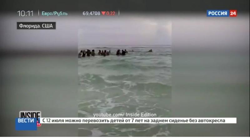 Новости на Россия 24 • На пляже во Флориде тонувшую семью спасли живой цепью из 80 человек