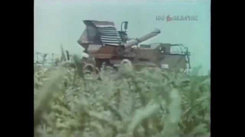 1987 й год. Уборка зерновых в Белоруссии.