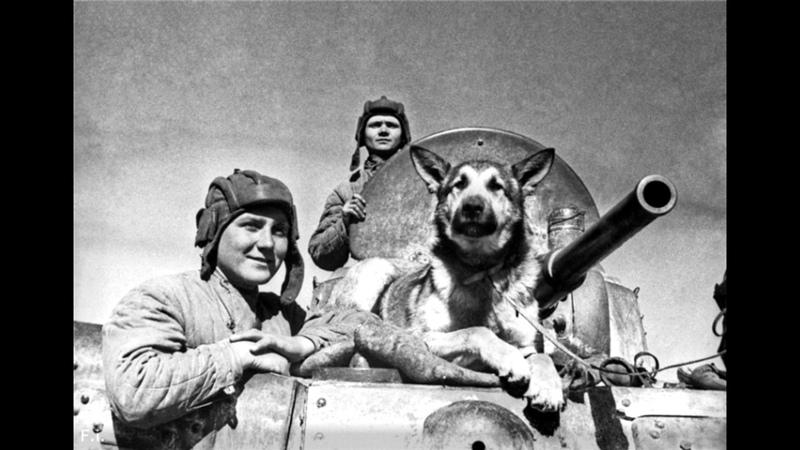 Экипаж бронеавтомобиля БА 10 старший сержант Эндрексон, сержант Ершаков и овчарка Джульбарс