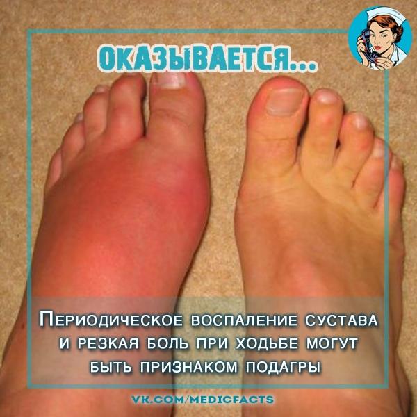 https://pp.userapi.com/c849332/v849332608/31ef0/qAamBm2-cbs.jpg
