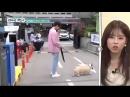 Sub Esp ParkJungMin _ Great Gatsby - Episodio 1_5 박정민7 online-video-cutter 1