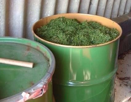 Травяные закваски для подкормки растений!