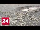 Таганский и Измайловский районы Москвы отказываются от реагентов - Россия 24