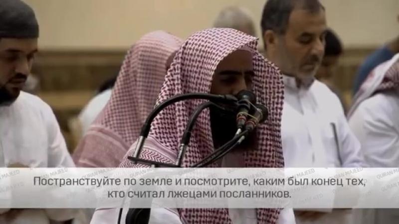 Мухаммад аль Люхайдан сура Семейство Имрана 133-142.mp4