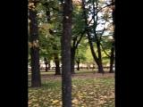 видео Instagram lizamami klizamamikУтренняя прогулка по прекрасному,дождливому Питеру...