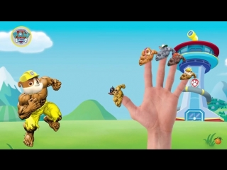 Щенячий патруль как Халк Семья пальчиков на Русском Марше: Чейз, Роки, Зума Песенка про пальчики Семья пальчиков БАРБОСКИНЫ и